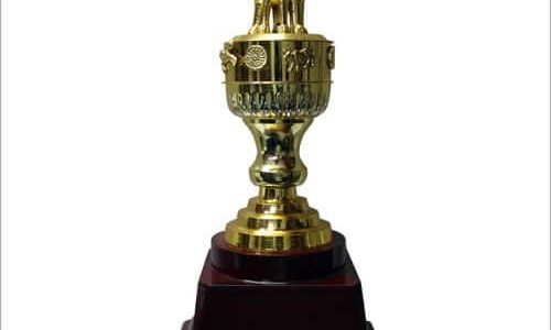 Ensure That The Trophy Supplier Is Best Or Not