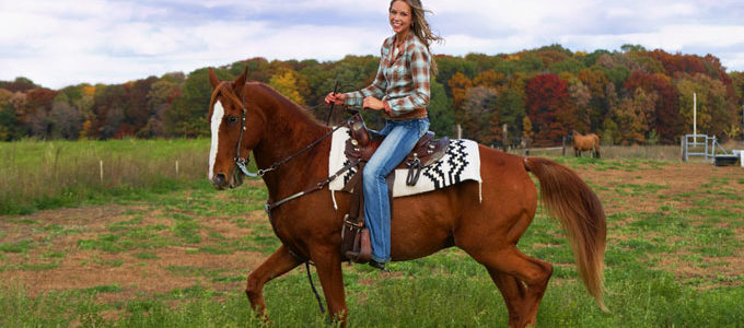 Few Steps To Learn Basics Of How To Ride A Horse
