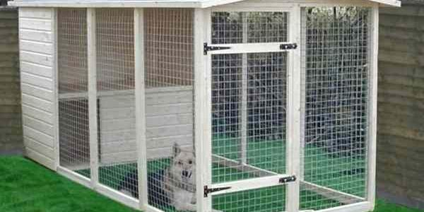 Getting The Right Kennel For Your Dog