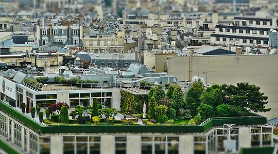 Keeping Your Employees Happy During A Commercial Roof Replacement And Its Job